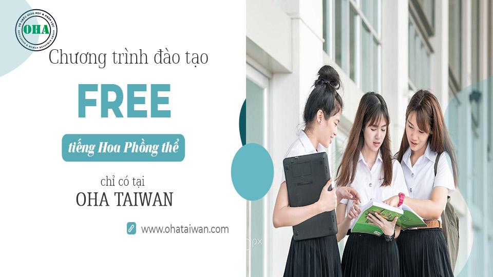 Tại OHA Taiwan có chương trình học tiếng Hoa Phồn Thể miễn phí dành cho sinh viên du học Đài Loan