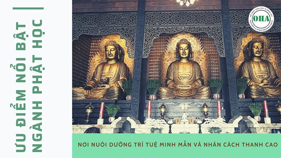 Những ưu điểm khi du học Phật học Đài Loan